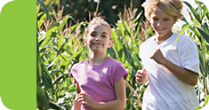 Resources for the BC School Fruit and Vegetable Nutritional Program